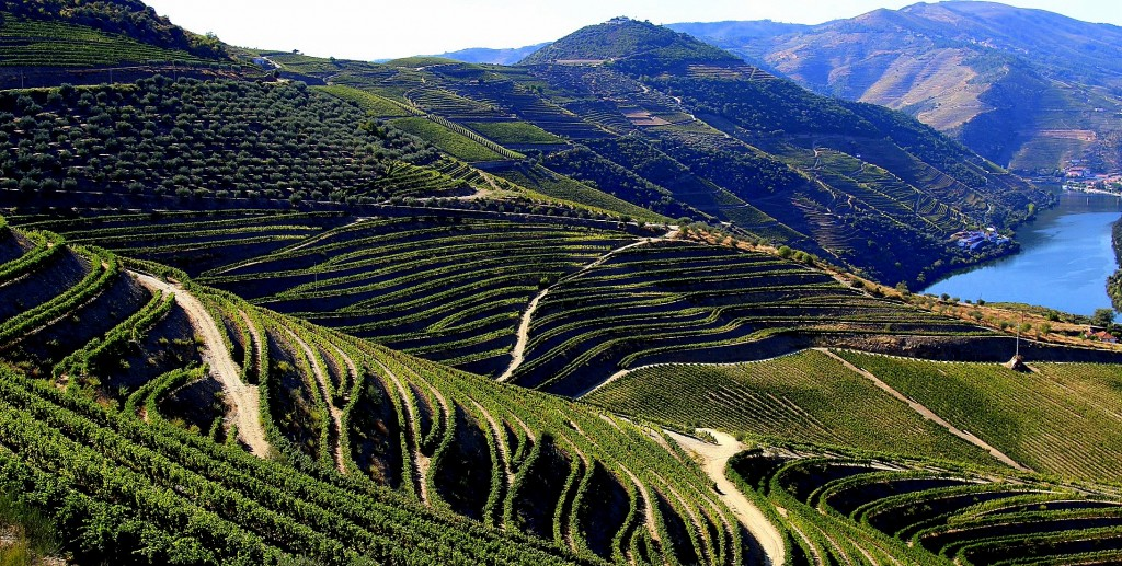 Douro overview